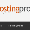 Hosting Pro Business Theme