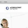 eConsultant – for Consultants and Professionals