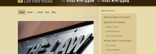 Law Firm Business Theme