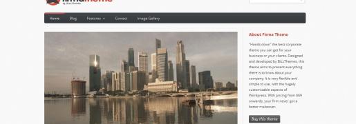 Firma Business WordPress Theme