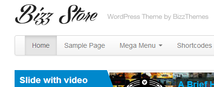 Bizz Store eCommerce Theme